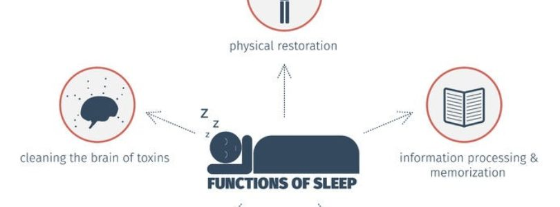 Importance of Sleep – Reasons Why You Should Catch More Hours of Sleep